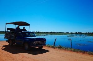 pantanal 6